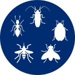 Proven_Insect_Repellent_Effective_Safe_ants_cockraches_sand fly_black fly_chiggers_bed bugs_gnat_no-see-um_tick_mosquito