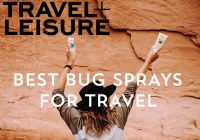 the best bug sprays for travel_proven repellent_review_better_effective_mosquito_tick_flies_news