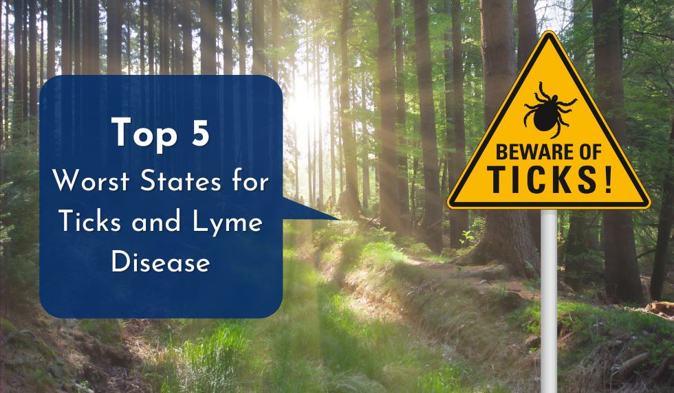 Top Five Worst States for Ticks and Lyme Disease